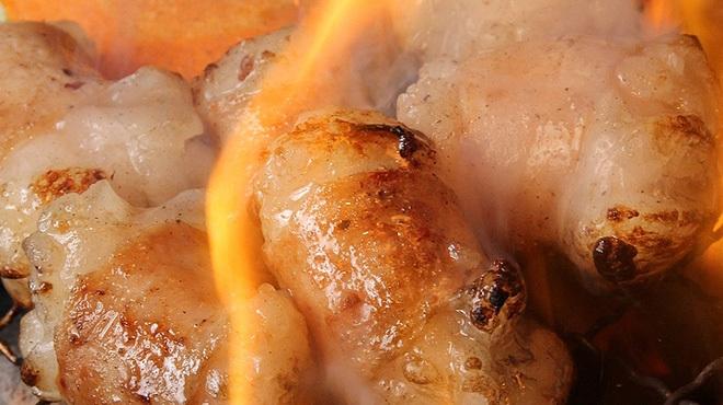 焼肉×ホルモン 溝の口 ひゃくてん - メイン写真: