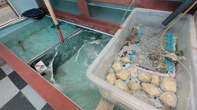 海の幸 魚虎 - メイン写真: