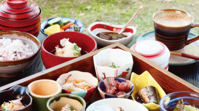 わらびの里 - 料理写真:木の薫り