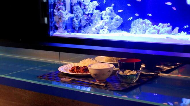 ベリーズ - 料理写真:水槽前の特等席☆昼も夜もお食事もお楽しみください♪