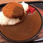 100084343 - 鉄板ミンチカツカレー(¥880)
