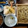 Teuchisobanowa - 料理写真:野和セット ミニ天ぷら付(1450円+税)
