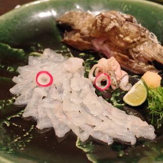 郷土味 かけはし - 料理写真:オコゼの薄造り