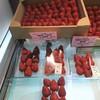 ザ・フルーツコレクション花梨