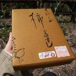 10041917 - 柿の葉すし10個入り1200円①