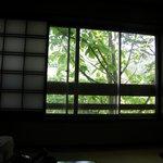 やまた旅館 - お食事は個室で。朴の木が窓辺にある。