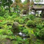 武井旅館 - 四季の移ろいを感じながら腰を伸ばしていただけます