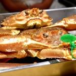 100506497 - 大きな間人蟹