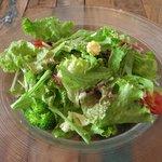 10053569 - パスタランチのサラダ。ドレッシングは控えめです。トマトは甘くて美味しい。