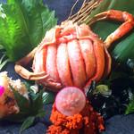 大盛鮮魚カツオ - 料理写真: