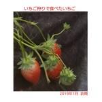 永田いちご園 - 料理写真: