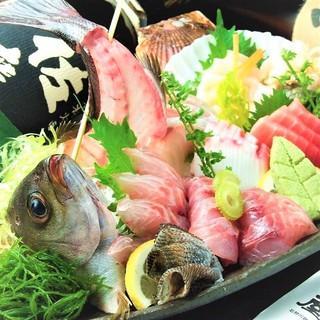 【鮮度抜群】地酒と一緒に紀州の美味しい魚をご堪能ください