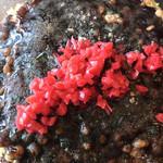 神戸風お好み焼き ろっこう苑 - 豚焼き。       美味し。