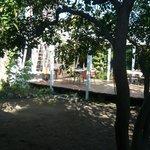 バザール・カフェ - 緑の中です