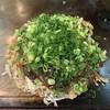 のんのん - 料理写真:のんのんデラックスネギかけ