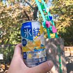 桜喜 - もちろん酒を片手に動物園徘徊するよねw