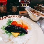 100時間カレーB&R - 野菜カレー