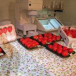 太陽のいちご - 全部キレイなイチゴ!