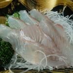 北浦臨海パーク きたうらら海市場 - ・ひらめ刺身 486円(税込) この刺身を見て天然だと分かればたいしたもの