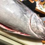 沼津魚がし鮨 流れ鮨 -