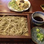 101073652 - ざる蕎麦と野菜の天ぷら