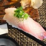 玄海鮨 - カンパチ です