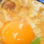 101299638 - 卵黄