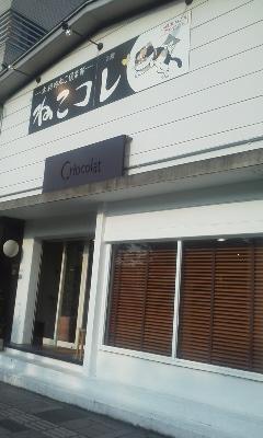 本格的ねこ倶楽部 ねこコレ 山形店 - 山形市の少し北 文翔館のとなりあたりに、ねこコレさんがあるミャ