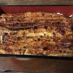 柏又 - 料理写真:鰻重、松  5,500円