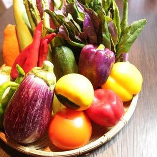 野菜ソムリエが選ぶ旬の有機野菜