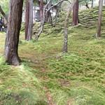 101550016 - 苔寺