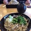 笠そば処 - 料理写真:ざるそば 大盛 850円