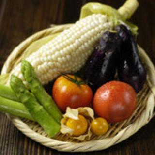 旬を感じる【野菜】