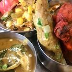 本格インド料理アシス -