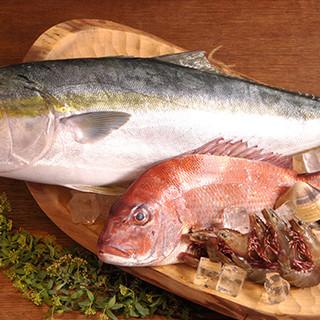 魚料理がおすすめ!鮮度抜群の旬の地魚をご堪能ください