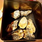 炭火焼鳥ガチとり屋 - 焼き牡蠣