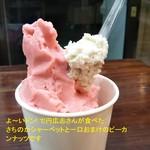 日高製菓 - 料理写真:よ~いドン! で円広志さんが食べたさちのかシャーベットと一口おまけのピーカンナッツです