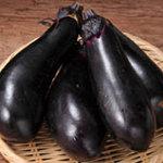 CHOTTO - 群馬県産の自根の千両茄子。接ぎ木をしていないので、茄子本来の味で皮まで旨い!