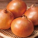 CHOTTO - 北海道産の特別栽培(減農薬)のタマネギ。調理のベースとなる玉ねぎもにもこだわり。F1種は取り扱いません。