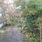 ガーデンカフェ兎遊 - 入り口から見た庭園