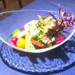 102182347 - 25種類の野菜とハーブドレッシング