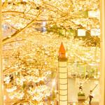 八重洲さくらst. 海老バル リッチパクチー - 店内からの桜