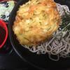 大江戸そば - 料理写真:ざるそば(320円)とかき揚げ(100円)