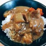 102370245 - ミニカレー丼