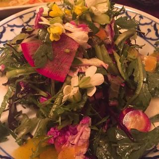ハイクオリティの宮崎食材を使用◆完全無農薬の野菜も仕入れ!
