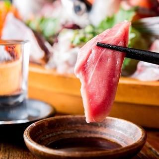【旬の鮮魚】本気のまぐろ刺し