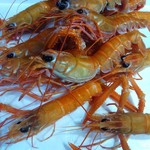 イタリア料理 らぱん - 形原産天然赤座海老