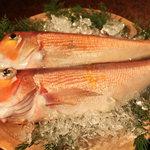 割烹 千代 - 新鮮な甘鯛が入荷