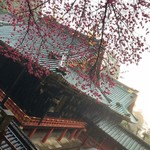 102747007 - 雨の久能山東照宮