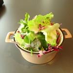 TSURUMI DINING - ランチサラダ
